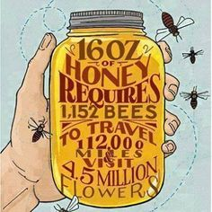 hippieseurope:  save our precious bees..