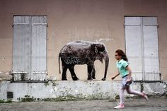 Run for it People Art, Cow, Horses, Animals, Animales, Animaux, Cattle, Animal, Animais