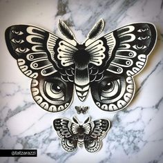 Moth Temporary Tattoos Temp Dotwork Dot Butterfly Bug Insect