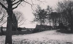 Schön! Der Schnee liegt immer noch! Ein toller Winter!  #schnee #snow #snowphotography #schneefotografie #winter #kalt #cold #coldoutside