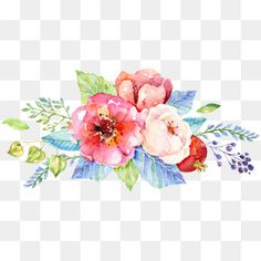 Resultado de imagen para fondos florales Watercolor Flower Vector, Watercolor Images, Watercolor Background, Watercolor Paintings, Flower Bouquet Png, Flower Background Design, Cactus Vector, Water Drawing, Mural Wall Art
