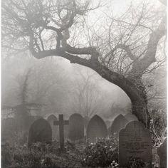 death tree Black and White dark dead cross goth gothic cemetery disturbing graveyard gravestone Dark Side, Old Cemeteries, Graveyards, Cemetery Art, Haunted Places, Belle Photo, Dark Art, Mists, Angel Statues