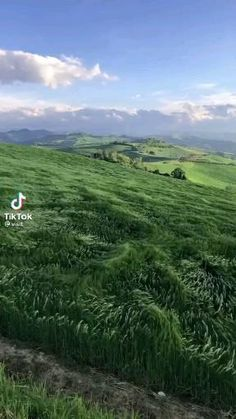 💚Wave after wave🌲🤔Follow @ecosenpai❗ 😅The best video about nature: amazing nature videos forests beautiful places | beautiful nature videos mountains | calm aesthetic nature videos | nature videos flowers spring | natural videos forest sunrises | relaxing nature videos | tik tok amazing nature videos | nature videos paradise | aesthetic nature videos wanderlust | green aesthetic nature videos | earth aesthetic nature videos #naturelover#lovenature#naturevibes#naturevideos#nature Beautiful Places To Travel, Cool Places To Visit, Beautiful World, All Nature, Amazing Nature, Beautiful Landscapes, Nature Photography, Scenery, Wanderlust
