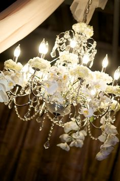 Gorgeous Chandelier for wedding reception