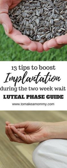 Boost your chances of implantation and conception during the luteal period with these 13 tips! Good for natural TTC, IUI, IVF, donor egg, and embryo transfer! embarazadas fashion fotos ideas moda diet first yoga fashion fotos outfits tips women Chances Of Getting Pregnant, Trying To Conceive, Foods To Avoid, Pregnant Mom, Get Pregnant Fast, Pregnancy Tips, Early Pregnancy, Pregnancy Freebies, Pregnancy