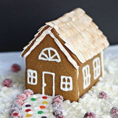 Gluten Free, Vegan Gingerbread House with egg free royal icing.