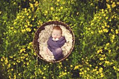 Dying for some summer sessions - Outdoor newborn photography