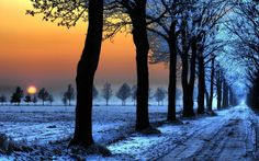 Beautiful tree photography winter sunset 21 Ideas for 2019 Tree Photography, Winter Photography, Landscape Photography, Sunset Photography, Wallpaper Paisajes, Winter Sunset, Winter Snow, Dark Winter, Winter Time