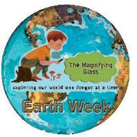 The Magnifying Glass, a wonderful blog about exploring nature with your kids