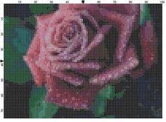Cross Stitch Pattern Lavender Rose Flower by theelegantstitchery, $10.00