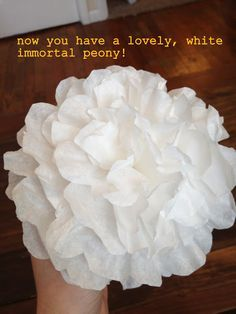 Coffee filter craft ideas pinterest peony filter and tutorials tutorial coffee filter flowers i must make these at my school in the spring mightylinksfo