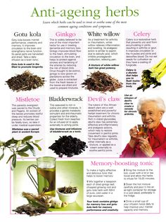 Anti - ageing herbs www.SELLaBIZ.gr ΠΩΛΗΣΕΙΣ ΕΠΙΧΕΙΡΗΣΕΩΝ ΔΩΡΕΑΝ ΑΓΓΕΛΙΕΣ ΠΩΛΗΣΗΣ ΕΠΙΧΕΙΡΗΣΗΣ BUSINESS FOR SALE FREE OF CHARGE PUBLICATION Health Recipes, Tea Recipes, Breakfast Recipes, Dinner Recipes, Healing Herbs, Natural Healing, Natural Cures, Natural Skin, Anti Aging Serum