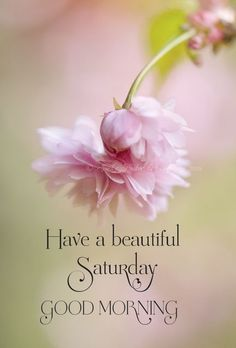 Happy Good Morning Quotes, Happy Weekend Quotes, Good Morning Saturday, Good Morning Cards, Good Morning Gif, Good Morning Wishes, Good Morning Images, Saturday Quotes, Sunday
