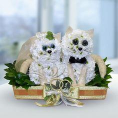 Милые котята из живых цветов