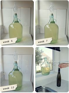 Well it's been a while since my last feijoa wine update. We have taken the wine out of the demijohn and bottled it! Fejoa Recipes, Fruit Recipes, Clean Recipes, Wine Recipes, Recipies, Wine Magazine, Homemade Wine, Wine Bottle Opener, Expensive Wine