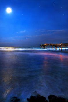 robert-dcosta: Jan Beach Moon And Orion   RD