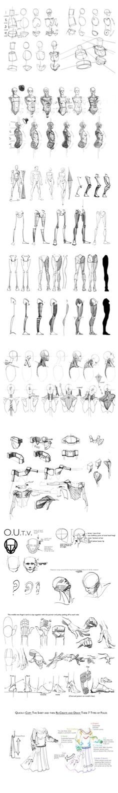 Anatomy Drawing Tutorial Guide Reference How To Draw Anime Master Anime Ecchi Picture Wallpapers… Anatomy Sketches, Anatomy Drawing, Anatomy Art, Human Anatomy, Zbrush Anatomy, Figure Drawing Reference, Body Reference, Anatomy Reference, Human Drawing