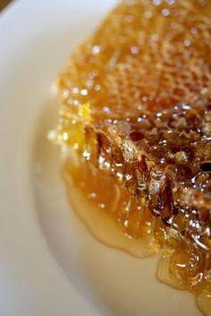 big table farm honey comb...I love honey!