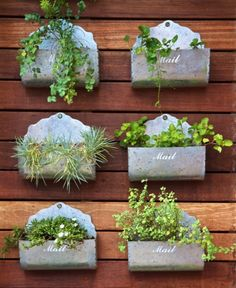 Container Gardening For Beginners. Grow herbs, flowers and other plants in containers like pots and old mail boxes. Small Space Gardening, Garden Spaces, Small Gardens, Outdoor Gardens, Vertical Gardens, Vertical Planting, Mailbox Planter, Old Mailbox, Vintage Mailbox