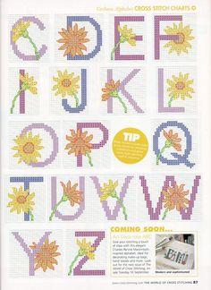 Gerbera alphabet