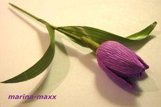 Для тюльпана нам потребуется :          - конфетка (подходит очень много видов: марсианка, осенний вальс, трюфель и так далее)    - гофрированная бумага    - тейп-лента  <<>>  - лист аспидастры …