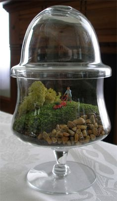 Terrariums just wanna have fun. Green moss simulates a golf course while the resident lawnmower man attends to his duties. This container is a shrimp ...