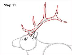 Learn how to draw an elk with this how-to video and step-by-step drawing instructions. A new animal drawing tutorial is uploaded every Tuesday. Deer Drawing Easy, Elk Drawing, Easy Drawings, Step By Step Drawing, Hunters, Animal Drawings, Hacks, Paintings, Animals
