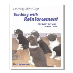 Teaching With Reinforcement