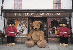 the teddy bear museum, stratford, warwickshire Teddy Bear Names, Teddy Bear Hug, Teddy Bear Cartoon, Steiff Teddy Bear, Teddy Bears, Bear Hugs, Bear Gallery, Museum Of Childhood, Paddington Bear
