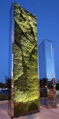 Green wall & Mirror