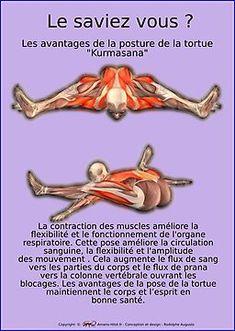 – H… - yoga fitness Ashtanga Vinyasa Yoga, Bikram Yoga, Yin Yoga, Yoga Meditation, Yoga Fitness, Muscle Fitness, Health Fitness, Yoga Sequences, Yoga Poses