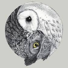 yin yang art - Google 検索