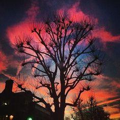 Ladbroke Grove, courtesy of Sam McKnight (@sammcknight1)