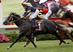 Jockey Tommy Berry, who has ridden the likes of Designs On Rome (Ire), Military Attack (Ire) and Helene Paragon (Fr) to feature-race victories for trainer John Moore on frequent visits to Hong Kong, will …