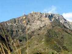 Monte Scuderi, Ali