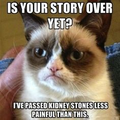 Hell No Kitty .For more humor pics and grumpy kitty visit Grumpy Kitty, Grumpy Baby, Grump Cat, Yup, Ohhh Yeah, Cat Jokes, Hilarious Jokes, Cats Humor, Funny Humor