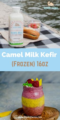 Kefir is the ancient beverage of the people from the Caucasus Mountains, who attributed their long healthy lives to traditional (raw) kefir. Camel Milk, Healthy milk, Nutritional fact of camel milk, Wholesome dairy beverage, Dessert recipes using camel milk, Camel milk nutrition, Yoghurt drink, Healthy breakfast recipes! #camelmilk #staplediet #camelmilknutrition #healthymilk #healthybreakfast #yoghurtdrink #dessertrecipes #camelmilkkefir