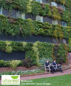 Verde Profilo Vertical Garden | Jardin Intérieur   Planters | Pinterest |  Walled Garden And Gardens
