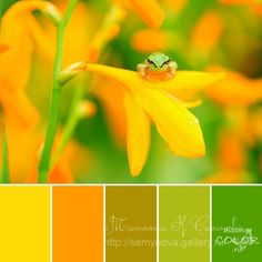 Gallery.ru / Фото #46 - сочетание цвета оттенки зелени2 - semynova