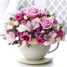 Bom dia meus amores!!!!!! Que o café da manhã venha sempre servido com flores, muitas flores. Ótima semana para todos vocês!!!!🌺🌸🌺🌸🌺🌸🌺🌸🌺🌸🌺🌸🌺🌸🌺🌸🌺🌸🌺🌸🌺🌸🌺🌸🌺🌸🌺🌸🌺🌸🌺🌸🌺🌸🌺🌸🌺🌸🌺🌸