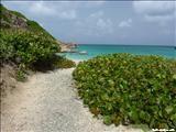 Isla Caja de Muerto - ZeePuertoRico.com