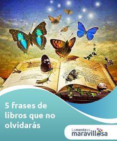 5 frases de libros que no olvidarás.  Hay libros que leemos y que no dejan una huella en nuestra memoria, pero hay libros que por más que pase el tiempo recordamos y amamos, aunque no los volvamos a leer.