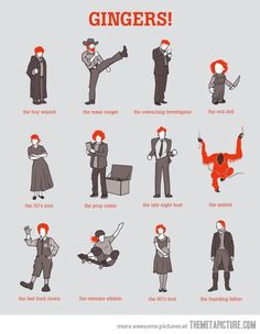 Types of Gingers  (where is SETH GREEN on this!!!!!????)