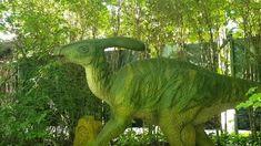 Viele Schlangenarten gibt es im Reptilienzoo Happ in Klagenfurt. Wunderschön, viele davon auch sehr giftig, wie zB. Mambas, Kobras und Klapperschlangen. Weiters Riesenschildkröten und Skorpione, Vogelspinnen und Leguane, Krokodile und Warane.  In der Außenanlage des Zoos befindet sich ein Dinosauriergarten. Lustig für Kinder und schön schattig an heißen Sommertagen. Klagenfurt, Zoos, Street Art, Dinosaur Stuffed Animal, Elephant, Instagram, Animals, Dinosaur Art, Types Of Snake