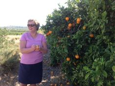 Kim Picking Oranges in Spain Spain, Tableware, Design, Dinnerware, Dishes, Design Comics, Place Settings