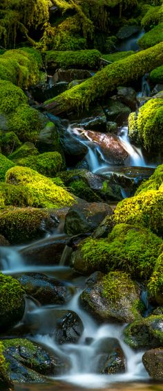 Olympic National Park and Sol Duc Falls make for a great day or overnight trip from Seattle.