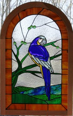Blue Macaw in Rain Forest Stained Glass Panel with Oak Frame