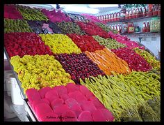 Pickle (moghalal) shop in bab sreega market damascus syria,