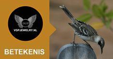 Lees & download de brochure betekenis van een mockingbird: https://www.vgpjewelry.nl/psym/symbolische-betekenis-van-de-mockingbird-spotvogel/  #Vgpjewelry #Symboliek