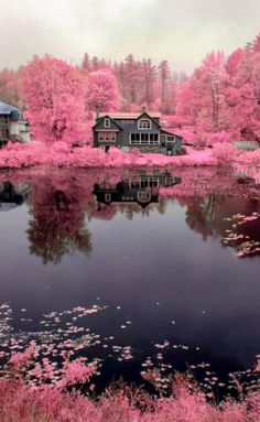 Science Discover Nature Paysage Magnifique 43 Ideas For 2019 Beautiful Nature Wallpaper Beautiful Landscapes Beautiful Nature Pictures Beautiful World Beautiful Places Landscape Photography Nature Photography Infrared Photography Photography Hacks Beautiful World, Beautiful Gardens, Beautiful Images, Beautiful Flowers, Beautiful Nature Wallpaper, Beautiful Landscapes, Landscape Photography, Nature Photography, Infrared Photography
